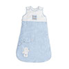 B IS FOR BEAR SLEEPING BAGS (0-6) - BLUE